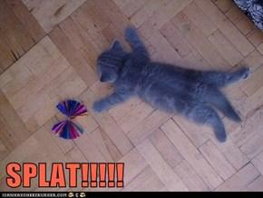 SPLAT!!!!!
