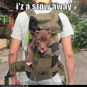 i'z a stow away
