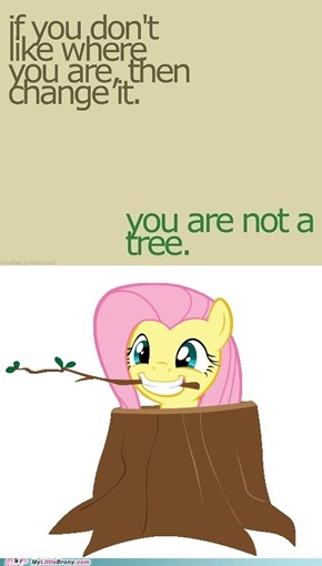 Fluttertree Can't Change