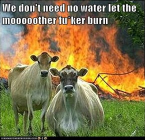We don't need no water let the mooooother fu*ker burn
