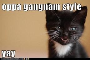 oppa gangnam style  yay