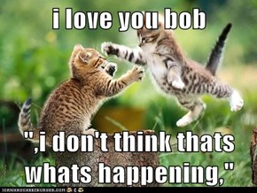 "i love you bob  "",i don't think thats whats happening,"""