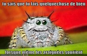 tu sais que tu fais quelquechose de bien  lorsque même les araignées sourient