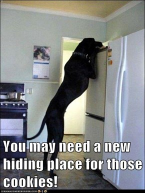 You may need a new hiding place for those cookies!