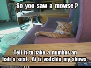 So  yoo  saw  a  mowse ?