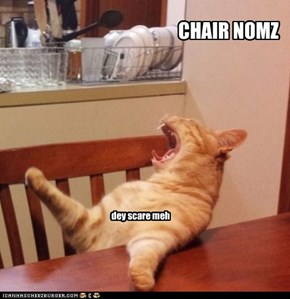 CHAIR NOMS