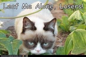 Leaf Me Alone, Losers!