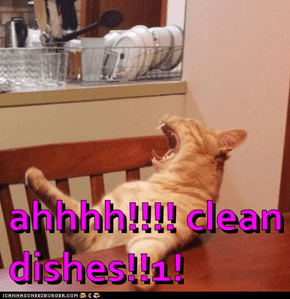 ahhhh!!!! clean dishes!!1!