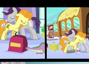 Carrot, who is that pony?