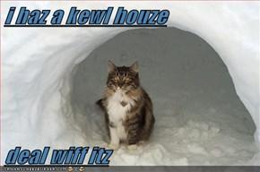 i haz a kewl houze  deal wiff itz