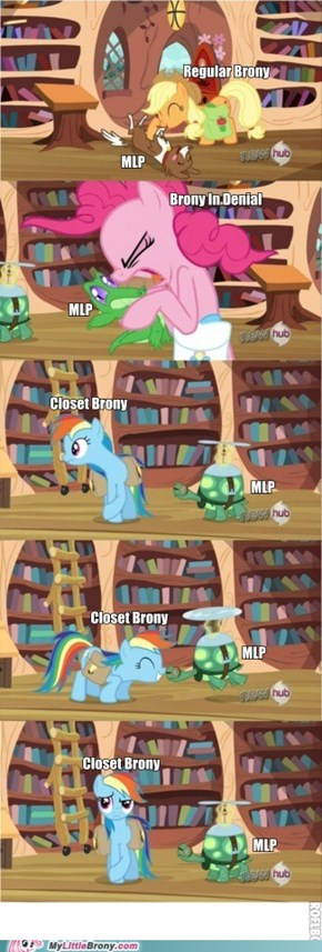 Know Your Brony