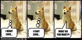 I WONT LOOK...