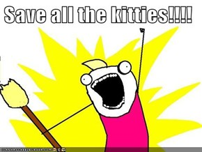 Save all the kitties!!!!