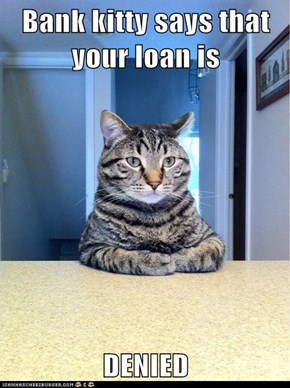 Bank kitty says that your loan is  DENIED