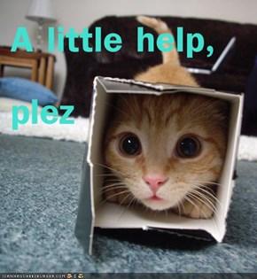 A little help, plez