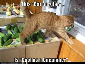 "This ""Cat Burglar""...  Is ""Cool as a Cucumber""..."