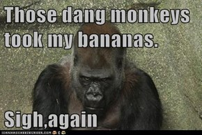 Those dang monkeys took my bananas.  Sigh,again