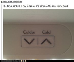Temperature Controls