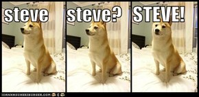 steve     steve?   STEVE!