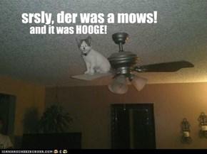 srsly, der was a mows!