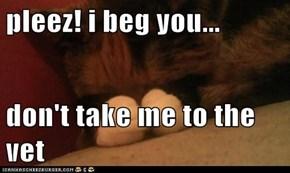 pleez! i beg you...  don't take me to the vet
