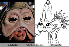 A Sullustan Totally Looks Like A Bunmaster