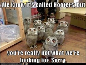 We know it's called Hooters...