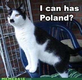 Heil Catler