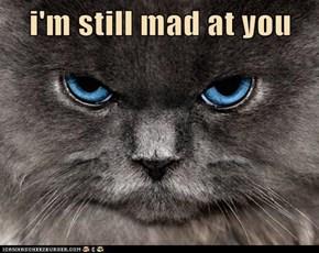 i'm still mad at you