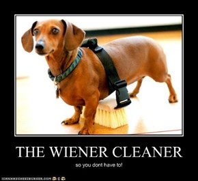 THE WIENER CLEANER