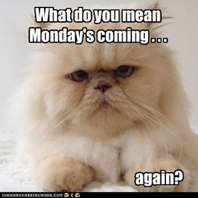 What do you mean Monday's coming . . .