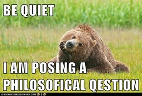 BE QUIET  I AM POSING A PHILOSOFICAL QESTION