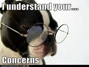 I understand your....  Concerns