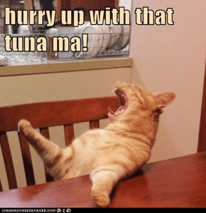 hurry up with that tuna ma!