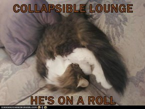 COLLAPSIBLE LOUNGE  HE'S ON A ROLL