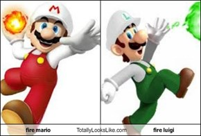 fire mario Totally Looks Like fire luigi