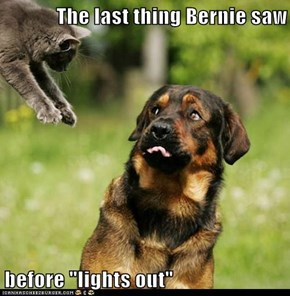"The last thing Bernie saw  before ""lights out"""
