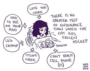 Cat People Problems
