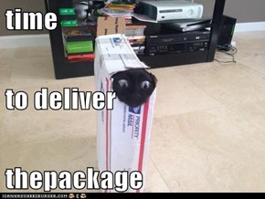 time  to deliver thepackage
