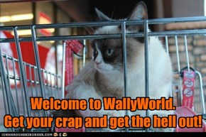 GrumpyCat: WallyWorld Greeter