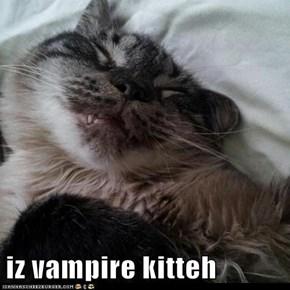 iz vampire kitteh