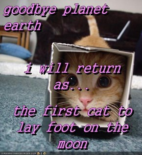 goodbye planet earth i will return as... the first cat to lay foot on the moon