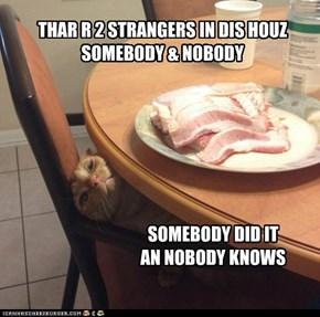 SOMEBODY & NOBODY