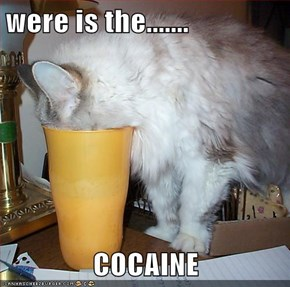 were is the.......  COCAINE