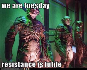 we are tuesday  resistance is futile