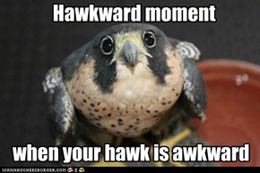 Hawkward moment