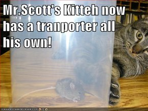 Mr.Scott's Kitteh now has a tranporter all        his own!