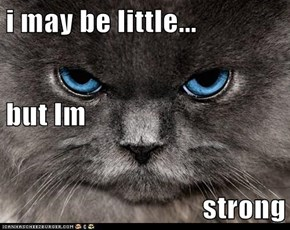 i may be little... but Im strong
