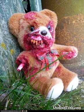 This is My Teddy, Mister Fleshbits