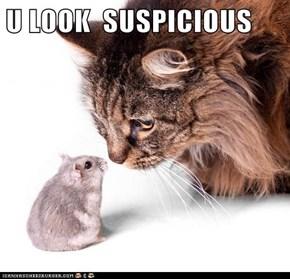 U LOOK  SUSPICIOUS